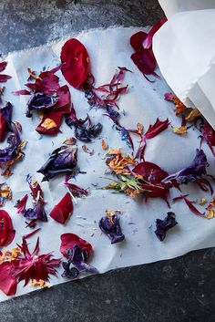 Leave it to dear friend and celebrated photographer Andrea Gentl, and natural dyer and textile designer Cara Marie Piazza, to show us how utterly dreamy wilted, decaying and dead flowers can be. With Andrea behind the lens and Cara sharing design tricks of the trade, the two recently joined forces to create this stunning natural dye tutorial. While many would toss a wilted bouquet, Andrea and Cara have long seen it as something beautiful and transformative. Andrea shoots the process of decay…