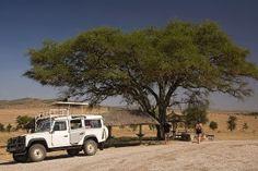 Honeymoon Ideas, Honeymoon Destinations, African Safari, Articles, Amazing