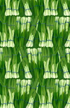 Scallions | The House of Beccaria#