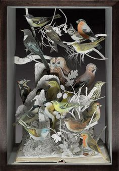 2008, The Illustrative Book of Birds II by Sue Blackwell.  Her work is amazing, well worth a browse of her website.