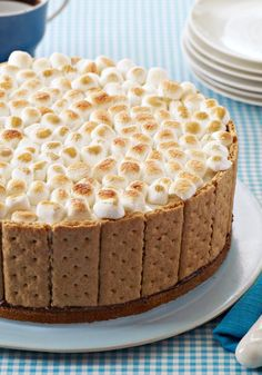 S'mores Ice Cream Cake -- In this dessert recipe, the ice cream inside the cake stays frozen while the s'mores topping toasts golden brown. Don't ask how--just say wow.