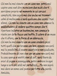 Vivere con un cane. Sempre meglio degli uomini Love Pet, I Love Dogs, Dog Friends, Best Friends, Animals And Pets, Cute Animals, Drunk In Love, Maine Coon Cats, Food For Thought