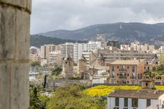 Reiseguide: Ein Tag in Palma de Mallorca - Reisetipp
