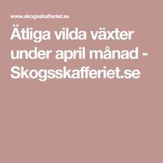 Ätliga vilda växter under april månad - Skogsskafferiet.se