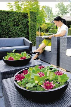 Container Water Gardens - Container water gardens and features plus small space landscaping Small Water Gardens, Container Water Gardens, Indoor Water Garden, Small Space Gardening, Balcony Gardening, Water Features In The Garden, Water Plants, Water Lilies, Garden Projects