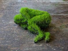 """ Lifes of Grass"", of Mathilde Roussel...How cool is this?! The Lifes of Grass sculptures show the effects of transformation of the material as a metaphor of the transformation of the body. Time sculpts the forms, makes them change and then decay."