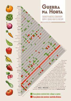 Horta caseira - Plantas companheiras: