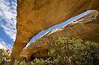 Beneath Moonshine Arch #visitdinosaurland #visitutah #vernalutah #moonshinearch #utah