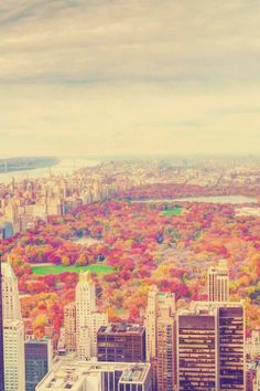 Autumn in Central Park, New York City-Yay, less than three months now!