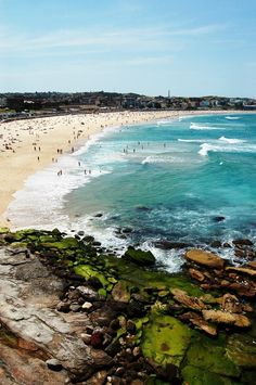 couldn't pick Australia without mention Bondi Beach , I would love to surf here