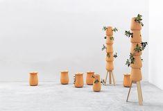patrick nadeau modern plants 3