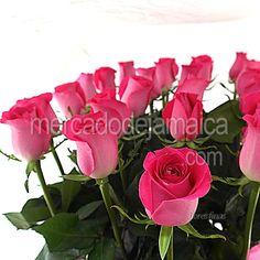 Arreglo Floral con Rosas Floral West| Envia Flores