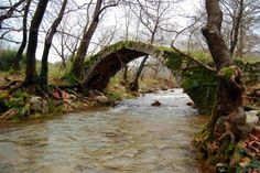 Bridge of Alfeios river Arcadia Peloponnese
