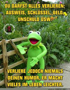 … if you laugh anyway - Hairstyle Laughter Yoga, Cool Pictures, Funny Pictures, Funny Memes, Jokes, German Quotes, Kermit The Frog, Facebook Humor, Sarcasm Humor