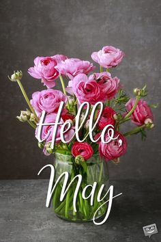 """Our floral collection of May cards is made to be shared to spread the joy that this month brings. We say a colorful big """"Hello, May! Seasons Months, Seasons Of The Year, Months In A Year, Hello May Quotes, April Quotes, May Month Quotes, New Month Greetings, Welcome May, Cute Good Morning Quotes"""