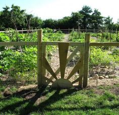DIY projects: How to start a community garden