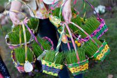 Grow Wheat Grass Baskets this Easter!  kirstenrickert.com