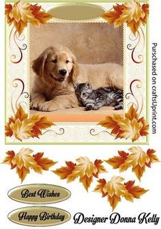 Best Buddies Birthday on Craftsuprint designed by Donna Kelly - An Adorable Puppy and kitten adorn the center of this pretty framed card. Autumn leaves enhance the lace frame. Sheet includes an approx 7x7 card front, decoupage, and 2 sentiment tags. sentiments read Best Wishes, Happy Birthday  - Now available for download!