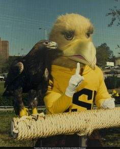 Golden eagle Nugget and mascot Seymour in the 1980s.