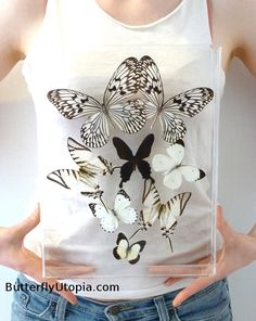 Black & White Butterflies