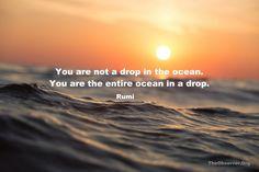 Rumi – The Observer