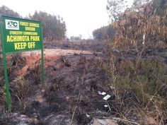 Ghana gets $24m to restore degraded forests - GhanaWeb