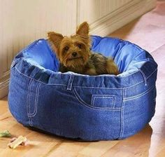 I love wearing jeans always. I feel pretty comfortable in it. I literally feel like I can not sleep unless I haven't worn my jeans. Jeans are the trousers… Jean Crafts, Denim Crafts, Pet Beds, Dog Bed, Old Jeans Recycle, Artisanats Denim, Denim Purse, Collections Etc, Denim Ideas
