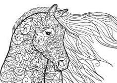 Die 14 Besten Bilder Von Gratis Ausmalbilder Pferde Free Coloring