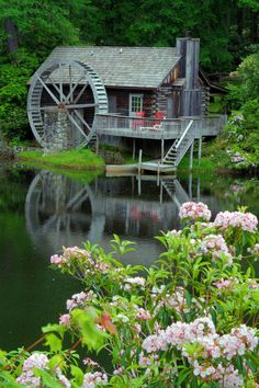 Cabin with water wheel