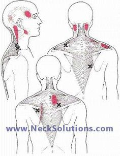 Location of lymph nodes on face and neck. Good to know for