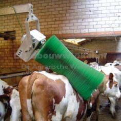 Nieuwe roterende koeborstel voor koeien