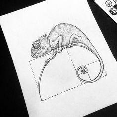 Fibonacci chameleon Me Leonardavincii Animal Sketches, Animal Drawings, Art Sketches, Art Drawings, People Drawings, Cameleon Art, Fibonacci Tattoo, Tattoo Und Piercing, Black And White Illustration