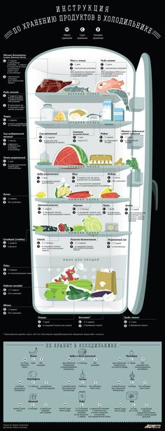 Как хранить продукты в холодильнике. Инфографика   Бытовая техника   Кухня…