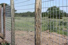 9 Best chicken fence ideas images in 2013 | Chicken fence