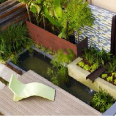Small garden and pool