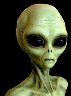 Scientist says Aliens in UFOs might be Earthlings from the Future - Aliens are Humans Alien Gris, Les Aliens, Aliens And Ufos, Aliens Funny, Alien Tattoo, History Channel Meme, Ancient Aliens Meme, Concept Art Alien, Alien Symbols
