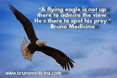 A flying eagle is not up there to admire the view. He's there to spot his prey – Bruno Medicina  www.brunomedicina.com #hypercoaching #coaching #hyperliving  #training #seminar #selling #leadership