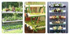 Tuberías en el huerto urbano o el jardín | Cuidar de tus plantas es facilisimo.com