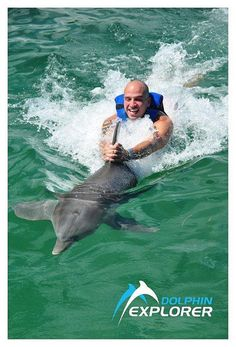 Let yourself get carried away on the Dolphin Explorer excursion in Punta Cana, Dominican Republic.