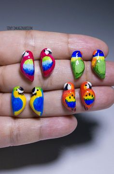 Parrot earrings bird earring handmade polymer by TinyImaginarium