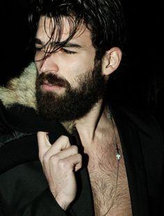 12 best beards ever