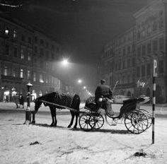 Rynek Główny, dorożka I Love Snow, Photography Workshops, Planet Earth, World War Two, The Locals, Old Photos, Poland, Maine, Old Things