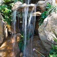 A backyard pond waterfall can be a beautiful addition to your backyard pond and garden. If you do your homework and due diligence, installing your waterfall will be the easy part. Carefully design your waterfall ahead of time. Know the length, width, expected depth of any streambed and the height above the pond's surface for the origin of your...