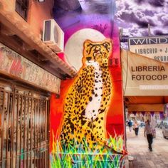 68 vind-ik-leuks, 2 reacties - Street Art Argentina (@streetart_arg) op Instagram: 'Mural por Ktrl V Art en San Isidro, Buenos Aires #streetart #urbanart #urbancanvas #pasteup…'