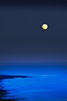 """ Blue Moon by (jimbryan) """