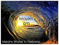 Mayim: Water In Hebrew
