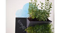 HerbsWall - Herbswall - BonyArt - Handmade Herb Wall, Herbs, Plants, Handmade, Hand Made, Planets