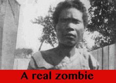 THREE BILLION PEOPLE ALREADY HAVE THE ZOMBIE PARASITE  How's that for a bounce scare Fox News type headline? The parasite in query is known as Toxoplasma Gondii, and it's a literal mind-control bug. It primarily lives and breeds in a cat's intestinal tract.   #real zombie #voodoo zombie #Zombie Factoids