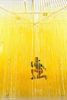 Jesús Rafael Soto's Penetrable LACMA (Los Angeles County Museum of Art) // localadventurer.com