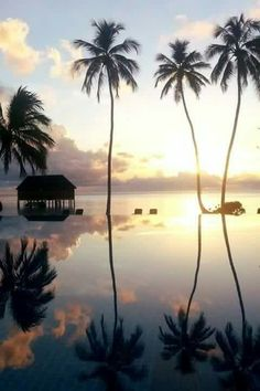 """""""You gather the idea that Mauritius was made first and then heaven, and that heaven was copied after Mauritius.""""mark twain"""
